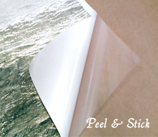Peel and Stick Posters